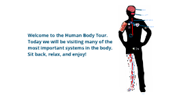 Copy of Human Body Tour