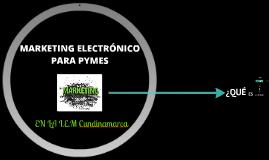 MKTNG. Electr. para PYMES