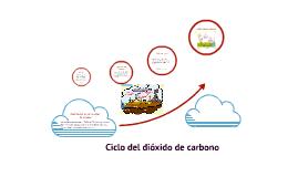 Ciclo del dióxido de carbono