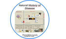 Natural History of Disease and Prevention Levels