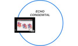 ECHO CONGENITAL