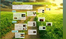 Copy of Cine y fotografía