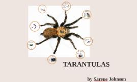 Sarene Animal Research Project
