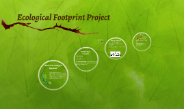 Ecological Footprint Project