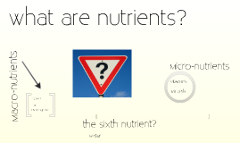 Copy of What are nutrients?