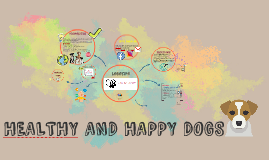 HEALTHY AND HAPPY DOGS
