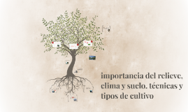 Copy of Copy of importancia del relieve clima y suelo. técnicas y tipos de c
