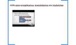 ADN-aren erreplikazioa, transkripzioa eta tradukzioa