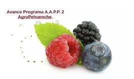 Avance Programa A.A.P.P. 2