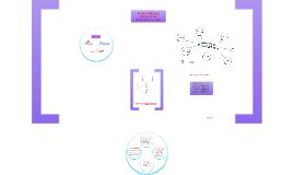 Figueroa's Framework 2