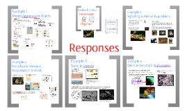 AP Bio- Regulation 7:  Responses