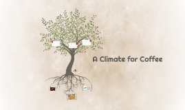 A Climate for Coffee