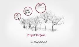 "D91 Graduate Project: ""Project Portfolio"""