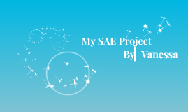 My SAE Project