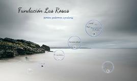 Copy of Fundación Las Rosas