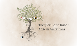 Tocqueville on Race : African Americans