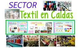 Sector textil - formulación