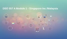 DSO 557 A Module 1 - Singapore Inc.