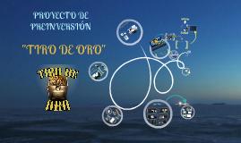 """Ante-Proyecto de Inversión """"Tiro de Oro"""""""