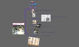 Copy of Organigrama de una empresa de confección.