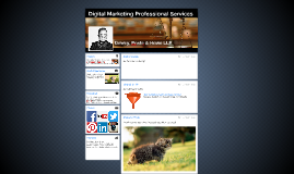 Digital Marketing Professional Services