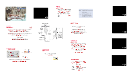 Processo de cuidar ao paciente em hemodiálise