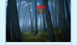 Copy of LOBOS