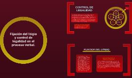 Copy of Fijación del litigio y control de legalidad en el proceso ve