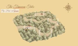 The Timucua Tribe