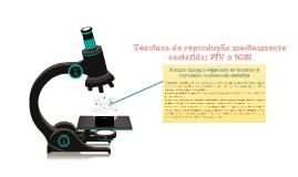 Técnicas de reprodução medicamente assistida: FIV e ICSI