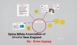 Copy of Spina Bifida Association of Greater New England
