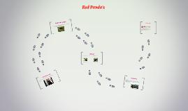 Red Panda's