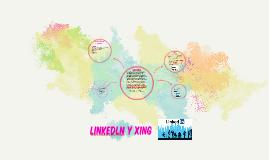 LINKEDIN Y XING