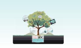Copy of El reto de vencer la evasion tributaria y el contrabando