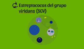 Estreptococos del grupo viridans (SGV)