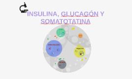 Insulina, glucagón y somatostatina