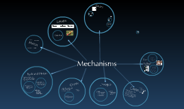 Copy of 3NT Mechanisms