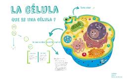 Copy of Estructura y funcion celular