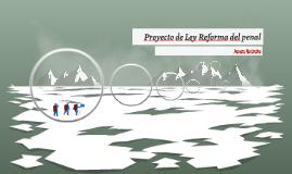 Proyecto de Ley Reforma del penal