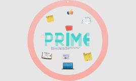 Practica ASE - PRIME Romania