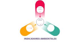 Copy of indicadores ambientales