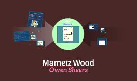 12Lit Mametz Wood Lesson 1