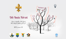 Dél-Buda Körzet 2013. jan. 25.