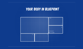 YOur Body in blueprint
