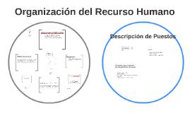 Organización del recurso humano
