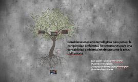 Consideraciones epistemológicas para pensar la complejidad a