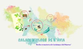 CALAIX D'OLORS DE L'ÀVIA