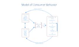 Consumer Behavior Model