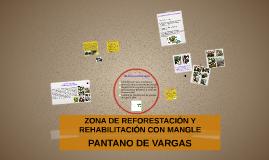 Copy of ZONA DE REFORESTACIÒN Y  REHABILITACIÒN