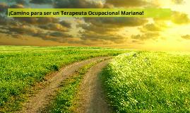 ¡Camino para ser un Terapeuta Ocupacional Mariano!